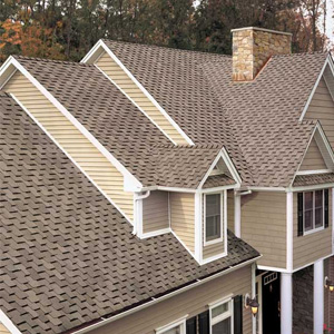 roofing/